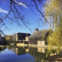 Spring, is that you?! What a beaut of a morning in our local town ?? #hertford #riverside #blueskies #spring #sunshine #beautifulday #willowtree #brewery #architecture #hellohertford