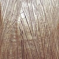 Fresh out of the sample room, a bespoke metallic 'Krakkle' finish #viero #vierouk #sample #polishedplaster #surfacefinish #luxuryinteriors #bespokeinteriors #interiordesign #specialistdecoration #surfacedesign #plasterfinish #texture #detail