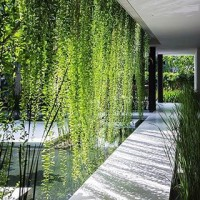 THE most liked interior design insta of 2017 as featured by @interiordesignmag - the stunning greenery at @mia_design_studio's Pure Spa, Vietnam. Who else is longing for Summer?! ???? #regram #tbt #2017 #interiordesign #exteriordesign #spa #luxuryspa #architecture #designinspiration #greenery #foliage #nature #purespa #vietnam